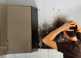 disinfezione e sanificazione per privati